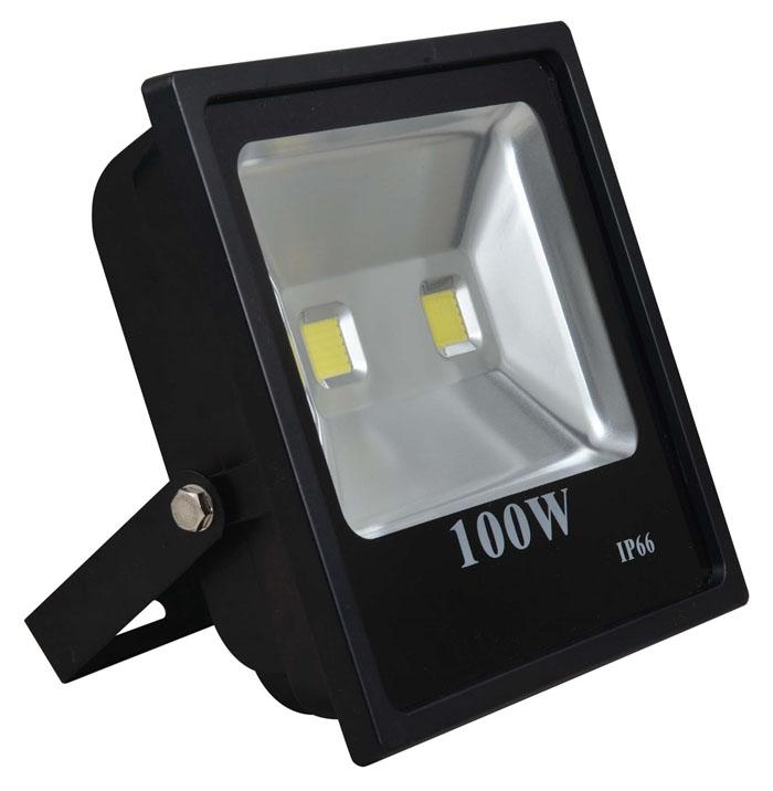 den-pha-100w